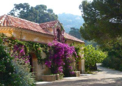 rayol-jardin2